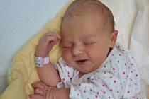 Vanessa Šebková, Blatná, 19.12. 2016 v 19.05 hodin,  3190 g. Malá Vanessa je prvorozená.