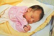 Julie Jiříková z Velkých Hydčic. Jůlinka se narodila 24.12.2018 v 8 hodin a 50 minut a při narození vážila 3200 g. Julie je prvorozená.