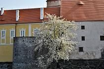 Tajemství strakonického hradu: Bašta.