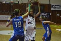 Strakonické kadetky doma prohrály oba zápasy a jsou v tabulce předposlední. Na snímku z utkání s Prosekem je u míče Veronika Voráčková.