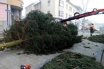 Vánoční strom na Velkém náměstí ve Strakonicích patří minulosti.