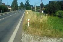 Okolí silnice v Dražejově.