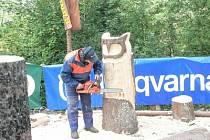Na mezinárodní lesnickou výstavu Euroforest se sjíždějí vystavovatelé i ze zahraničí. Ilustrační foto.