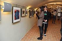 V Maltézském sále a v sále U Kata strakonického hradu se koná výstava prací strakonického malíře, grafika, sochaře Jiřího Mášky.