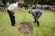 V Dřešíně vysadili k výročí republiky a srazu rodáků vedle stoleté lípy ještě jednu menší.