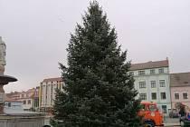 Vánoční strom ve Vodňanech.
