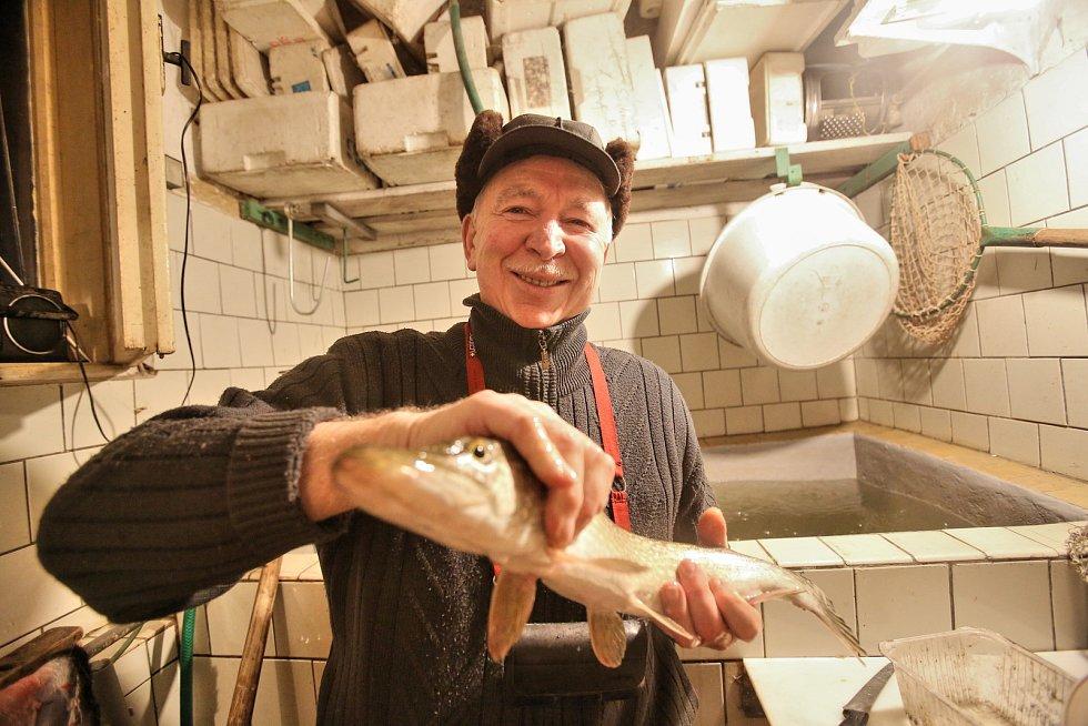 """Ve vaně. Tam chová Miloš Štěpnička mimo jiné i tuto štiku. """"Bydlím kousek od vodňanského náměstí a přesto chovám ryby,"""" usmívá se rybí nadšenec."""
