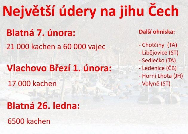 Jižní Čechy - Ptačí chřipka.