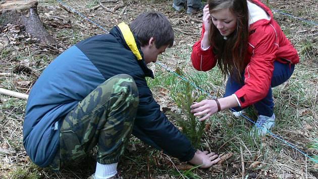 Žáky strakonických škol vysazování nových stromků bavilo. Chtějí pomoct přírodě.