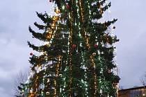 Strom v areálu strakonické nemocnice.