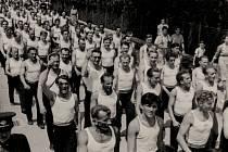 Vodňany - Tělocvičná jednota Sokol Vodňany po roce 1948.