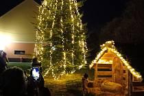Vánoční strom ve Štěkni.