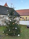 1. Vánoční strom Jinín.