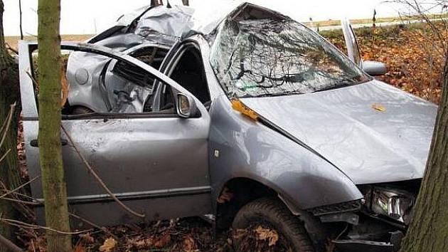 Vůz narazil do vzrostlého stromu.
