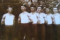Archivní fotografie sokolů z Cehnice.