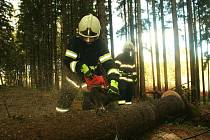 Zásahy hasičů z Čestic a pracovníku SÚS Strakonice na Podlesí.