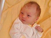 Sofie Schwarzová, Čimice, 29.3. 2017 v 10.26 hodin, 3100 g. Malá Sofie je prvorozená.