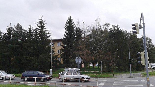 Stromy v Nádražní ulici