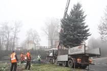 Instalace vánočních stromů ve Strakonicích.
