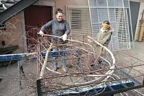 Příprava čapího hnízda.