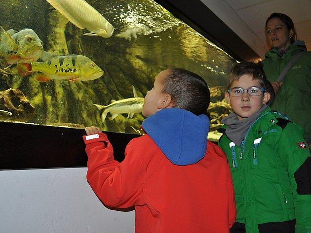 Den otevřených dveří v Rybářské škole ve Vodňanech