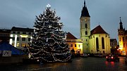 2. Vánoční strom náměstí Svobody, Vodňany