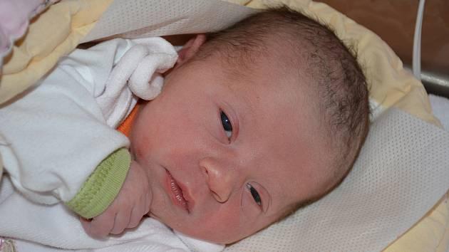 Marie Dolejší se narodila 3. ledna v 6,11 hodin s porodní váhou 2,7 kilogramu.