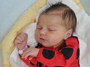Mia Mistrová, Strakonice,  2.4. 2017 ve 2.03 hodin, 3380 g. Malá Mia je prvorozená.