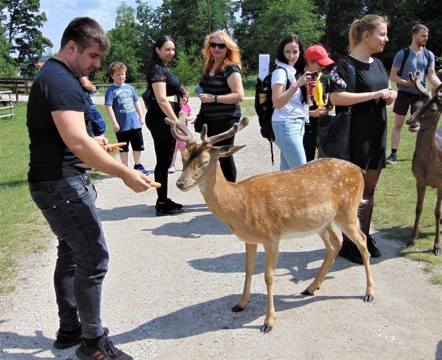 Blatná má turistům rozhodně co nabízet.