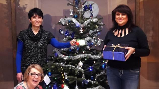 Vánoční přání dětem z azylových domů může splnit ve Vodňanech kdokoli.