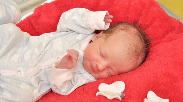Nela Podušková ze Strakonic. Nelinka se narodila 17. 12. 2019 ve 23.02 hodin a její porodní váha byla 2 830 gramů. Holčička je prvorozená.