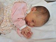 Anna Horáková, Zechovice, 22.1. 2018, ve 12.37 hodin, 3220 g. Malá Anna je prvorozená.