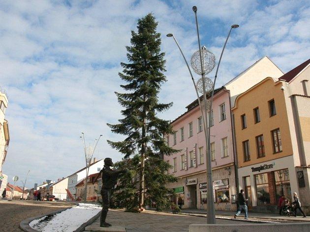 Vánoční stromy na Velkém náměstí ve Strakonicích. Jedli vystřídal smrk. Ten se při osazování zřítil kzemi - prasklo lano.
