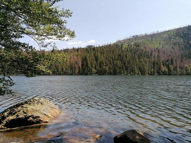 Šumava - každé léto navštívím pár míst, vtomto malebném koutu Česka, nejlépe spartou spolužaček.