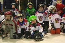Na strakonické Křemelce se konal nábor malých hokejistů.
