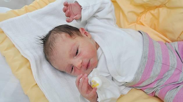Laura Hanžlíková z Volar. Laurinka se narodila 10. 4. 2019 v 6.22 hodin a při narození vážila 3270 g. Na sestřičku čekal doma bráška Jakoubek (3).
