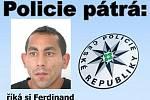 S případem ve Tchořovicích by mohl souviset pětatřicetiletý muž, který si říká Ferdinand.