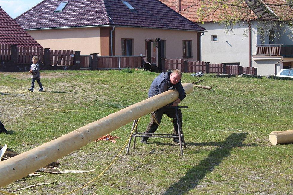 Hasiči v Radomyšli na Strakonicku si letos řekli, že si májku přes všechna nařízení a covidová omezení postaví.