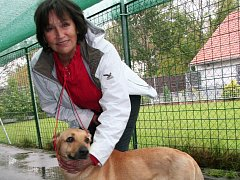 Marta Kubišová ve strakonickém psím útulku.