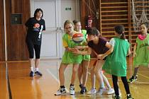 Ve Strakonicích by se rádi co nejdříve vrátili s basketbalovou mládeží do tělocvičny.