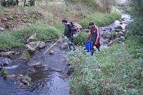 Cílem studie bylo přispět k objasnění otázky, zda mohou látky vypouštěné z čističek v delším časovém horizontu přecházet do ryb.