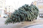 Vánoční strom Strakonice.
