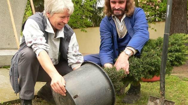 Zahradníci Miroslava Bláhová a Jan Kůst vysazují v blatné novou zeleň.