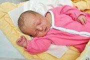 Gréta Panská ze Strakonic. Grétka se narodila 28.12.2018 ve 4 hodiny a 33 minut a při narození vážila 3960 g. Na Grétku doma čekali sestřička Karolínka (3) a bráška Adámek (1,5).