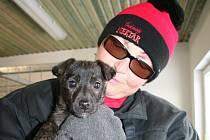 Ošetřovatelka Alexandra Auterská strávila letos mezi psy už třetí Štědrý den.