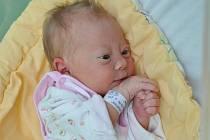 Diana Vrátná, Doubravice, 13.12. 2016 v 1.54 hodin,  3150 g. Malá Diana je prvorozená.