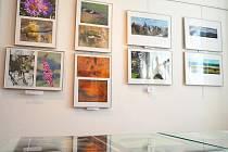Vodňany – V městské galerii pokračovala v pátek 26. dubna výstava TeriFoto Sokola Písek. Výstava pokračuje do 5. května.