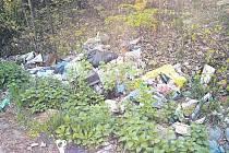 Takových hromad bylo v lesíku u Předních Zborovic mnohem víc. Když je silničáři uklidí, za několik dnů vyrostou znovu.