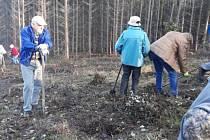 Stromek si mohl do městského lesa přijít vysadit každý, kdo měl zájem. Sešlo se 27 lidí.