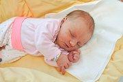 Jindřiška Kojzarová ze Strakonic. Jindřiška se narodila 21. prosince 2018 ve 13 hodin a 20 minut a při narození vážila 3670 g. Jindřiška má již doma sestřičku Zorku (2).